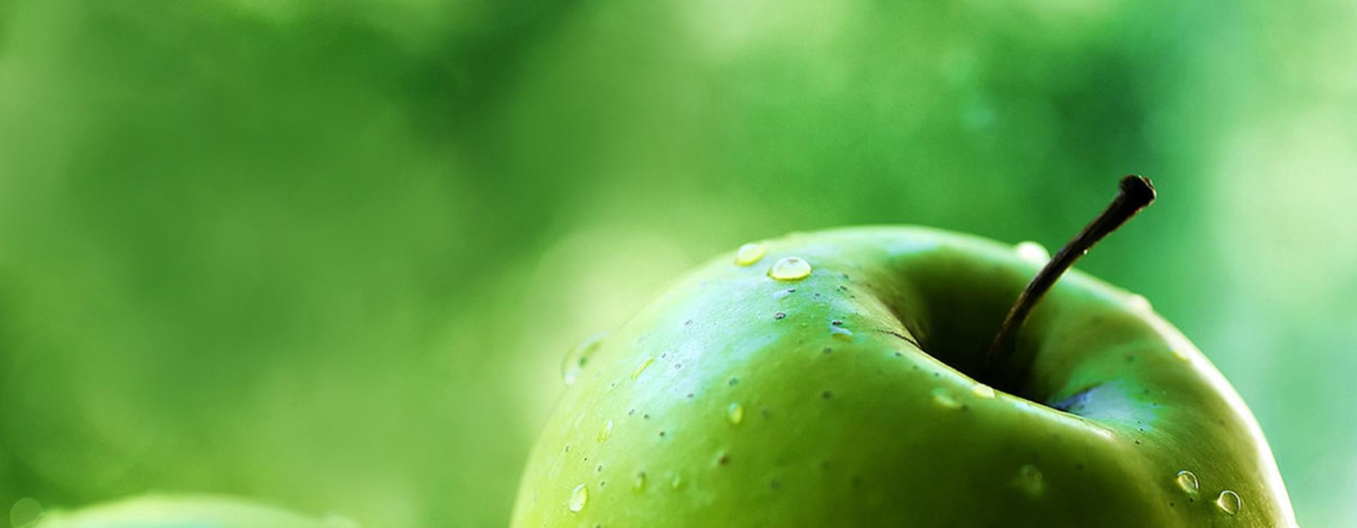 Антиоксиданты для пищевой промышленности